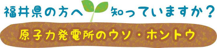 福井県の方へ 知っていますか? 原子力発電所のウソ・ホントウ